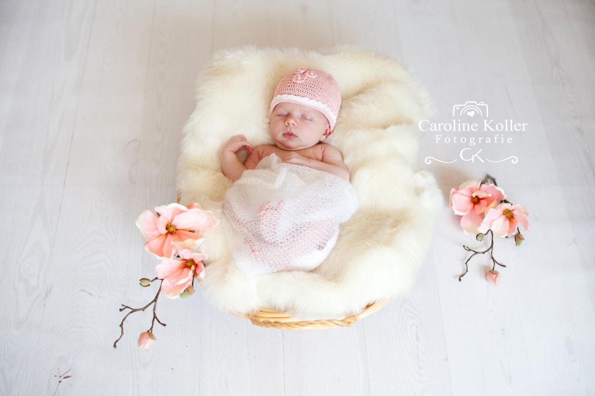 Neugeborenenfotos (14)