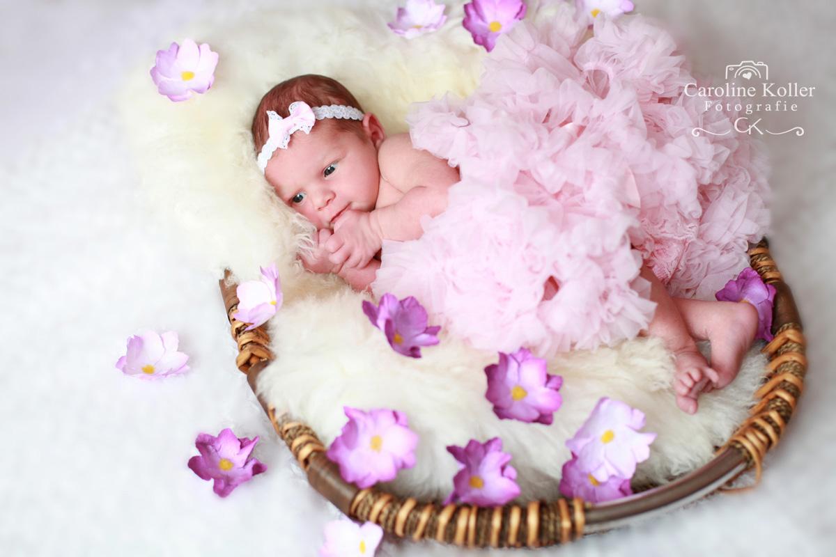 Neugeborenenfotos (26)